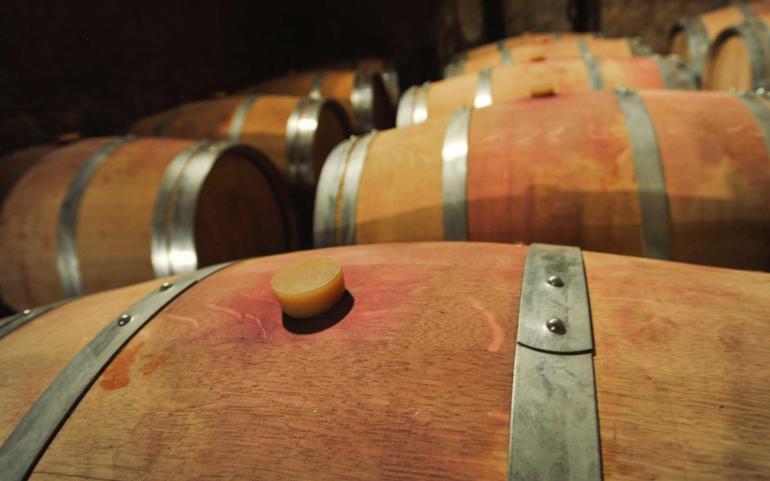 Las barricas donde el vino duerme